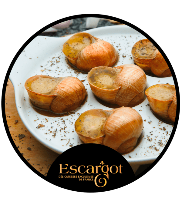 escargot djion