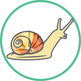 https://escargot-de-bourgogne.com.ua/wp-content/uploads/2018/07/step1.png