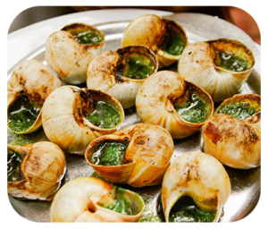 french-escargo